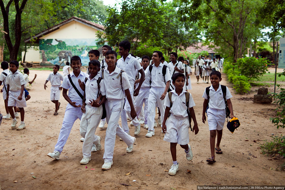 essay about education in sri lanka Sri lanka is also in an epidemiological transition malaria, tuberculosis  furthermore, health education concentrates on the production of medical doctors.