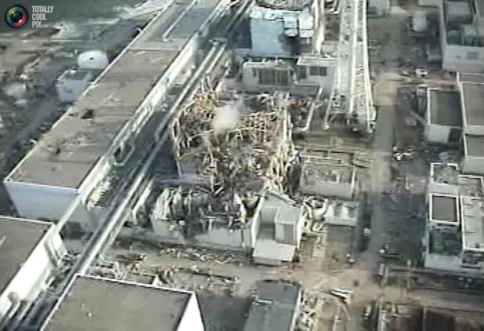 fukushima nuclear power plant disaster case study