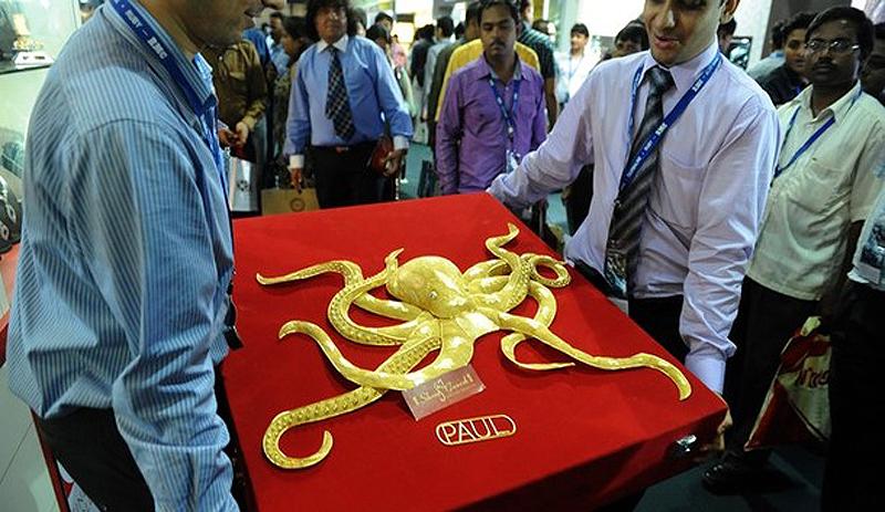 Щупальца осьминога фото